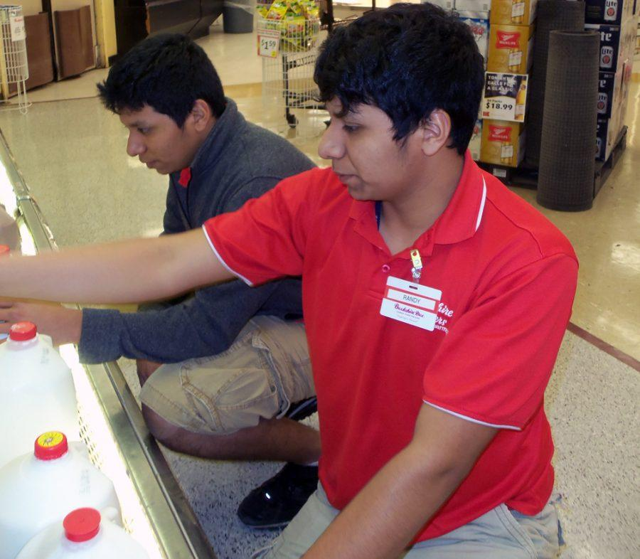 Brothers Randy and Rudy Salazar stock the milk at their part-time jobs at Brookshire Bros.