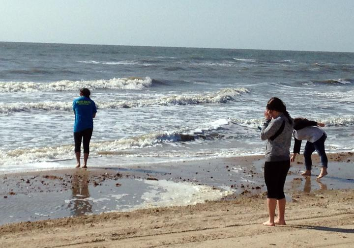 Debaters Nadia Garcia, Kendall Morales and Lilah Molina hunt for shells at the beach in High Island. The group relaxed at the beach on the morning of the second day of competition before debating in the afternoon.