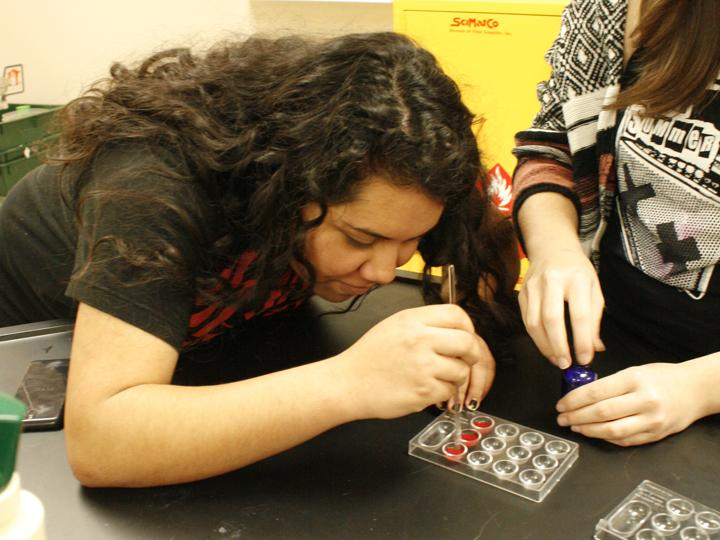 Senior+Diana+Avila+focuses+on+her+blood+typing+lab+during+forensics+class.