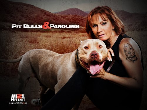 Pitbulls and Parolees offers second chances