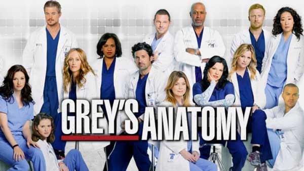 Greys Anatomy back for another season