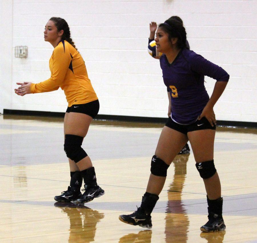 Volleyball+Senior+Night