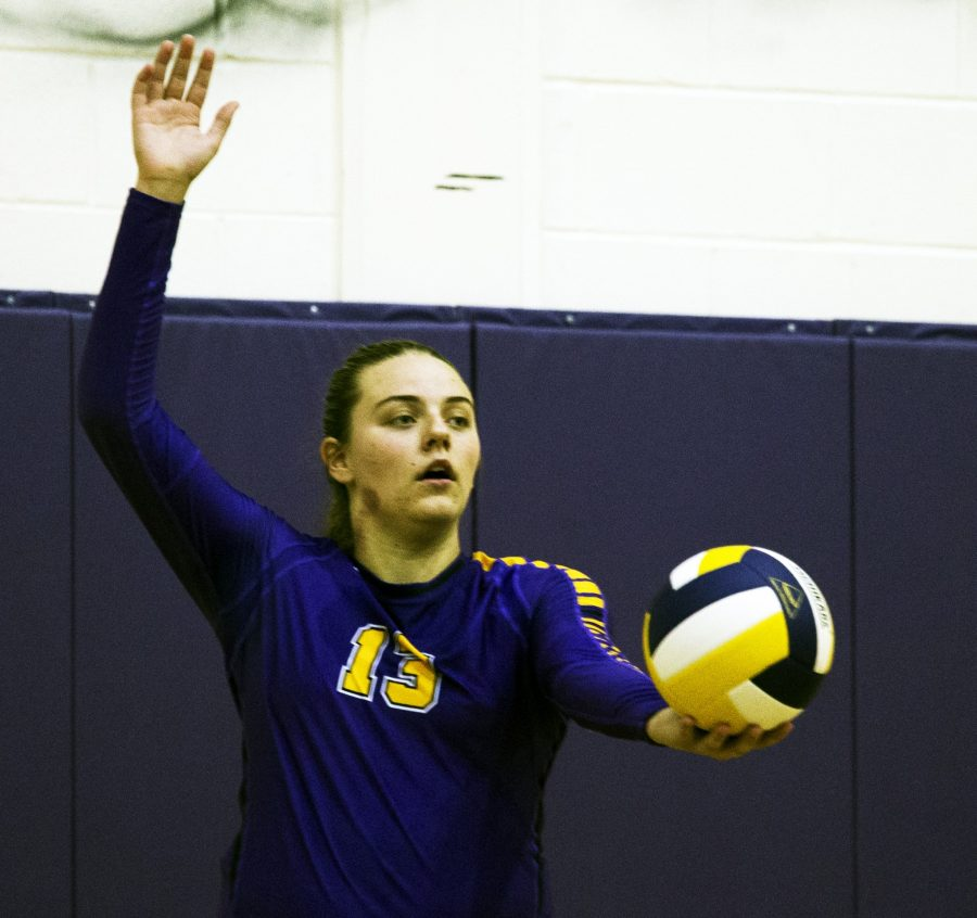 Volleyball team places in tournament