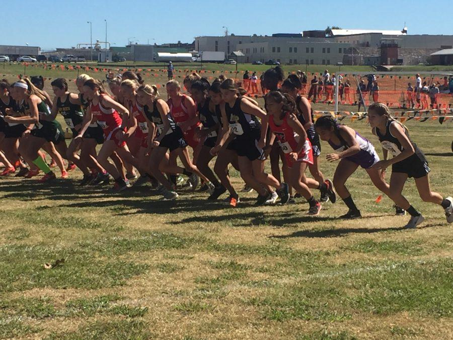 Cross-Country team advances two runners to regionals