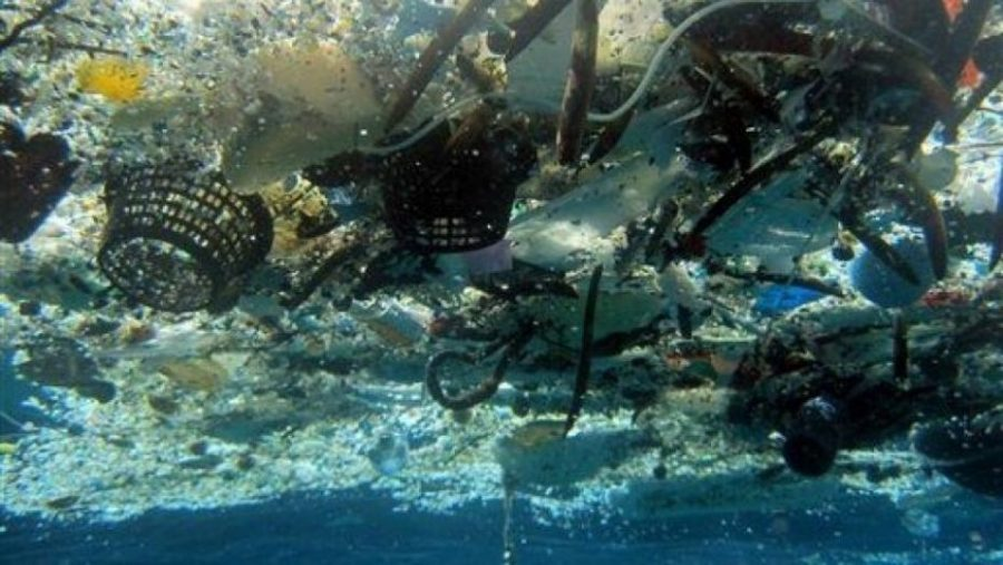 Garbage Patch grows, researchers worried