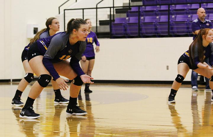 Volleyball team moves through preseason play