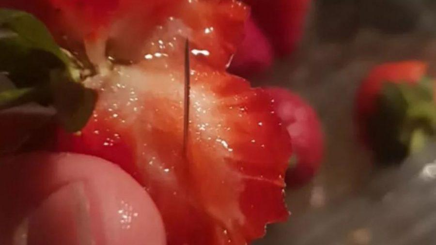 Strawberry+sabotager+caught