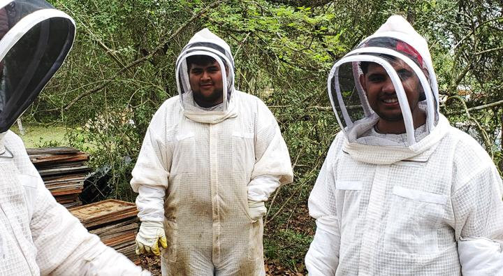 Students learn the art of bee keeping