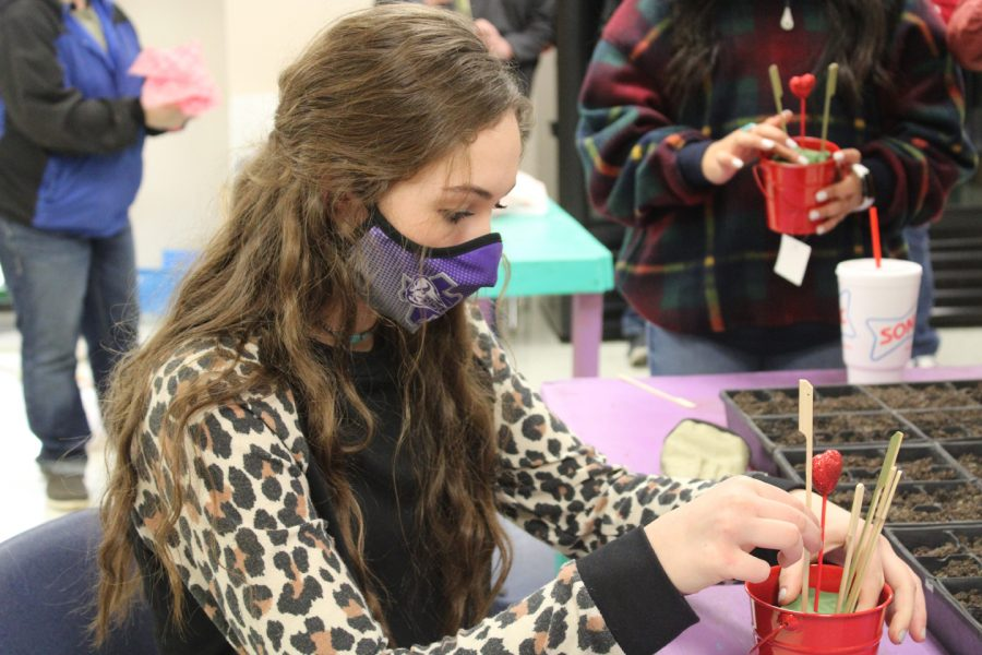 Sophomore Alison Bing works on her Valentine's Day project in Floral Design class. The students each made two projects - one for a teacher, and one for someone else special in their lives.