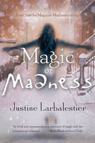 Magic or Madness sets the stage for a great trilogy