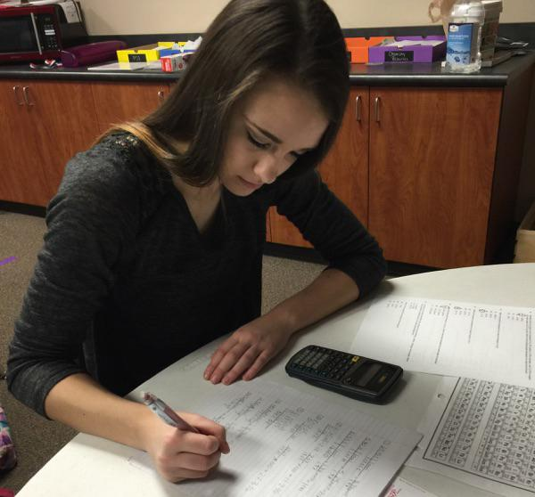 Sophomore Madison Rowan works on a math assignment.
