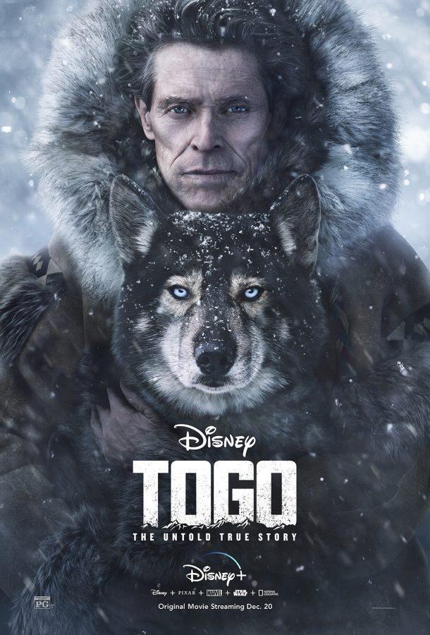 Togo showcases a true hero